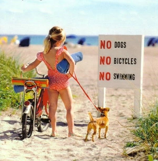me_326_no_swim_dogs_bicycle.jpg