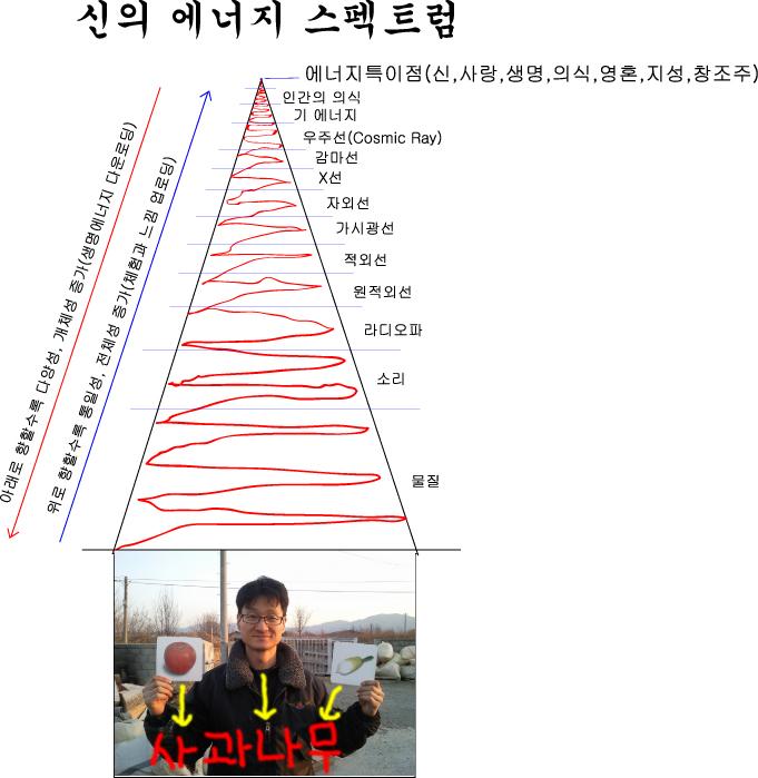 에너지스펙트럼_outlined.jpg